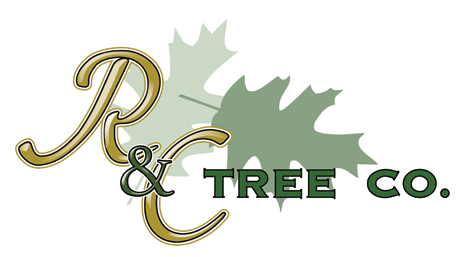 R and C Tree Company Logo